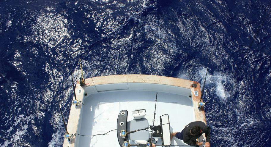Bermuda Fishing Tournaments