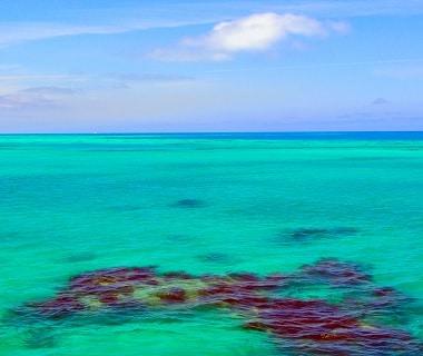 Bermuda snorkeling
