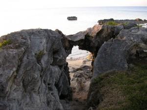 Elephant Kiss at Black Bay Beach