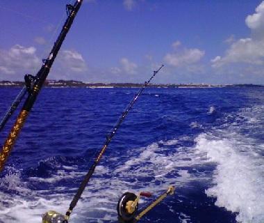 Come fishing in bermuda for Fishing in bermuda