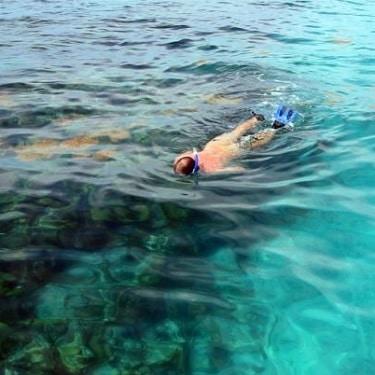 Bermuda Coral Reef