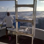 Setting the Fishing Lines