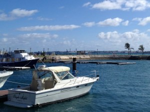 Under the sea charters thinking of bermuda for Private fishing charters nj