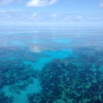 Crystal Clear Water over Coral Reef