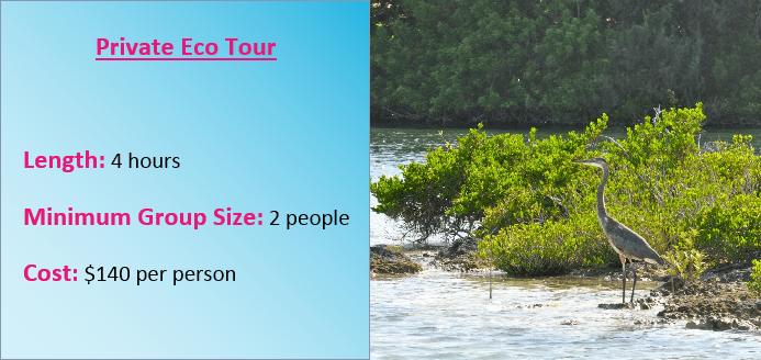 Bermuda Eco Tour Rates