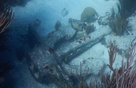 Shipwreck Anchor