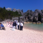 Jobsons Cove Beach Wedding - Wedding Party