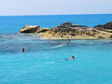Snorkeling charters inshore.